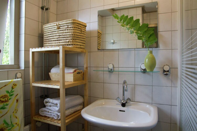 Holland | North Sea Coast North | Holiday home De Roodborst | all year | BathRoom