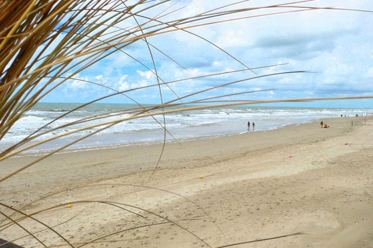 Holland | North Sea Coast North | Holiday home Hoeve Landzicht | all year | AreaSummer20KM
