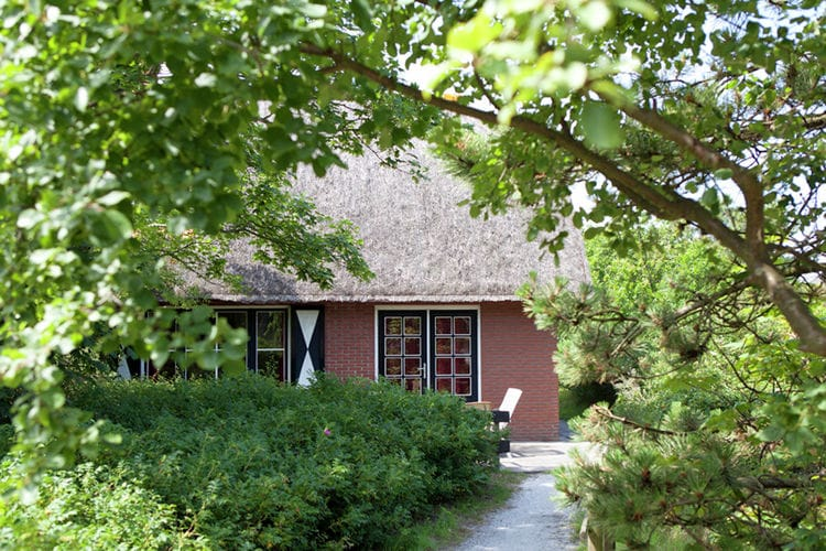 Holland | Wad Islands | Holiday home In 't Duin II | all year | ExteriorSummer