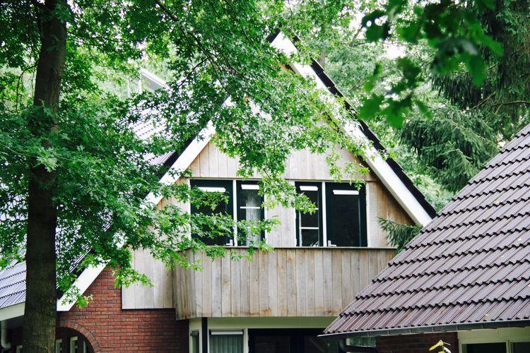 vakantiehuis Nederland, Overijssel, Hoge Hexel vakantiehuis NL-5173-01