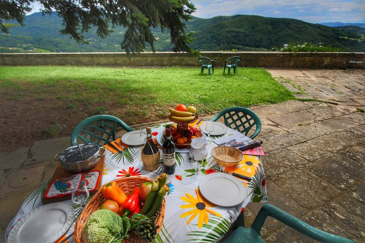 Boerderij Italië, Toscana, Rufina Boerderij IT-00000-25