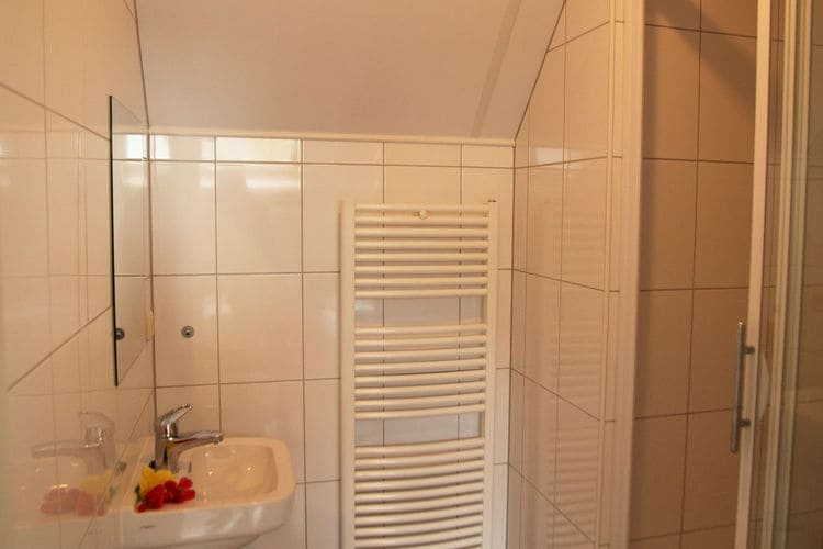 Holland | Gelderland | Holiday home De Hertenhoeve 36 pers | all year | BathRoom