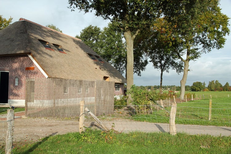 Holland | Gelderland | Holiday home De Hertenhoeve 36 pers | all year | ExteriorSummer