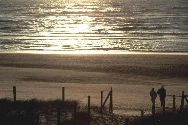 Holland | North Sea Coast South | Holiday home Aan de Lange Dam | all year | AreaSummer1KM