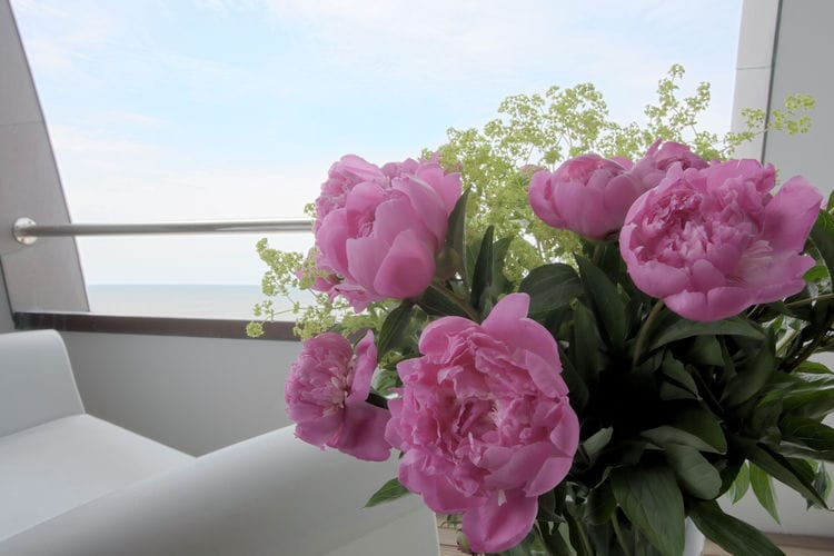 Holland | North Sea Coast North | Holiday home Beach Style Bloemendaal - Penthouse | all year | Ambiance