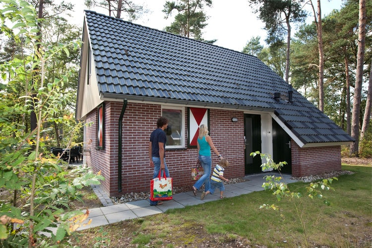 Bospark Lunsbergen  Drenthe Netherlands