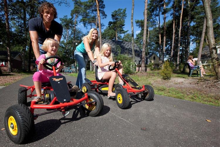 Chalet Nederland, Drenthe, Borger Chalet NL-9531-16
