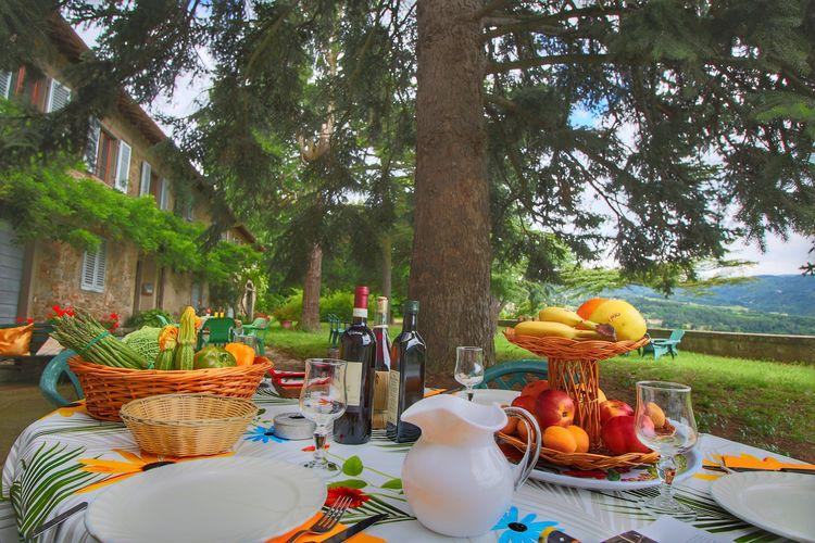Toscana Vakantiewoningen te huur Vakantieverblijf (2 appartementen) gelegen op een landgoed in de Pomino-streek