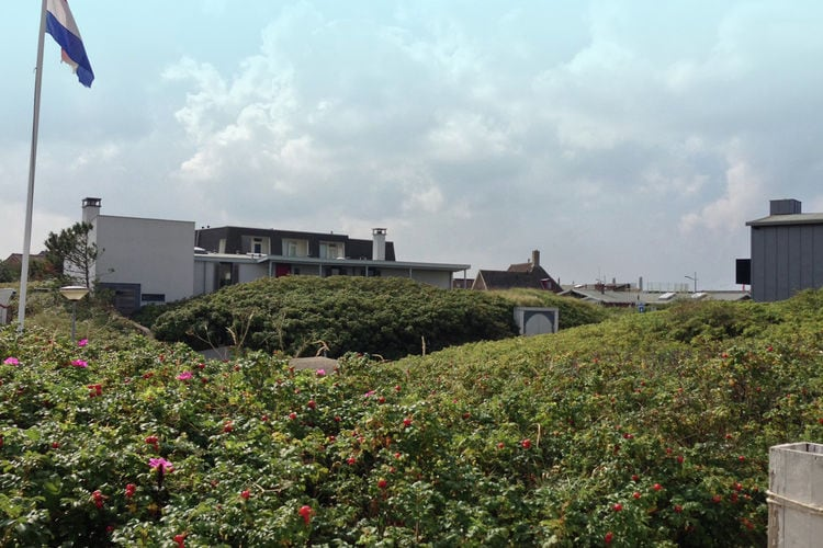 Holland | North Sea Coast North | Holiday home Duintop Bergen aan Zee | all year | ViewSummer