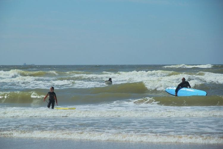 Holland | North Sea Coast North | Holiday home Duintop Bergen aan Zee | all year | AreaSummer5KM