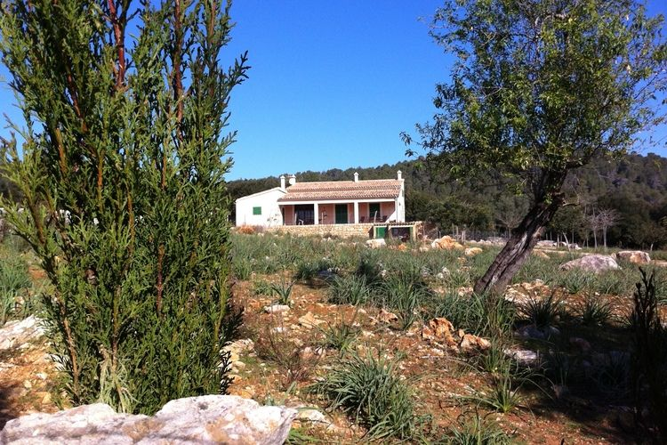 vakantiehuis Spanje, Mallorca, Campanet vakantiehuis ES-03170-39