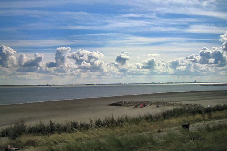 Holland | Zeeland | Holiday home de Bries | all year | AreaSummer5KM