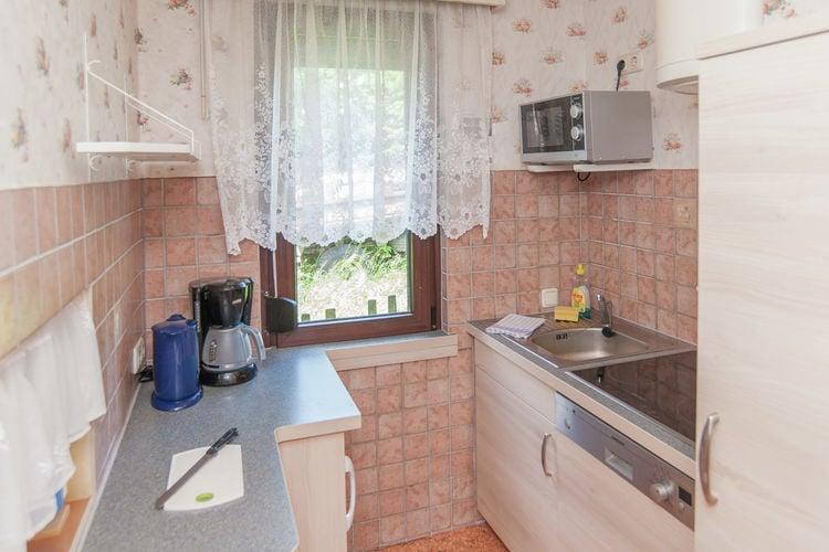 vakantiehuis Duitsland, Thuringen, Neustadt am Rennsteig vakantiehuis DE-98701-27
