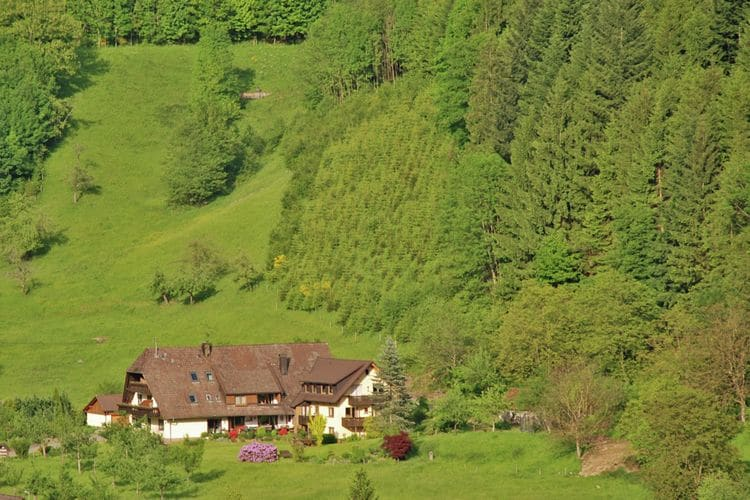 Haus am Wald Simonswald Black Forest Germany