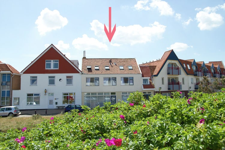 Holland | North Sea Coast North | Holiday home Familyhouse Near the Sea | all year | ExteriorSummer