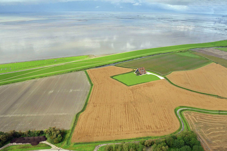 Holland | Friesland | Holiday home Landhuis Wad Anders | all year | ViewSummer