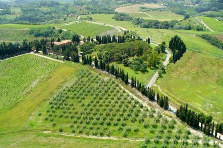 Ferienwohnung Montaione Trilo Sei (880356), Montaione, Florenz - Chianti - Mugello, Toskana, Italien, Bild 22