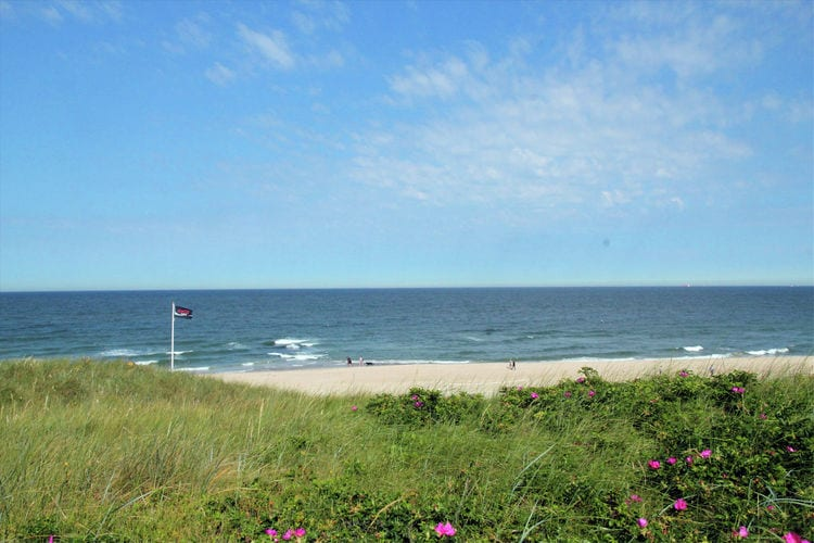 Holland | North Sea Coast North | Holiday home Deja Vu | all year | AreaSummer5KM