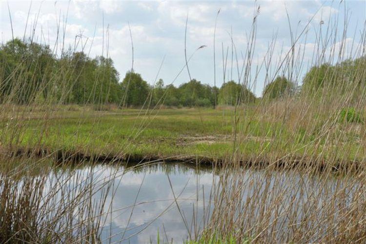 Ferienhaus Waterresort Bodelaeke - 't Rieten Schiphuis (1585429), Giethoorn, Kop van Overijssel, Overijssel, Niederlande, Bild 35