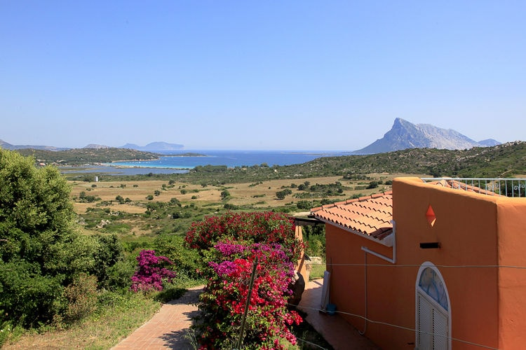 Appartement Italië, Sardegna, San Teodoro Appartement IT-08020-32