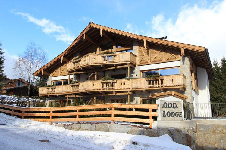 Leogang Lodges 4 - Chalet - Leogang