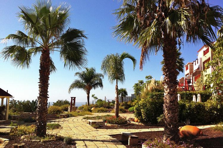 Vakantiehuis met zwembad met wifi  San Miguel de Abona  Family-wellnes-Pool-Calm