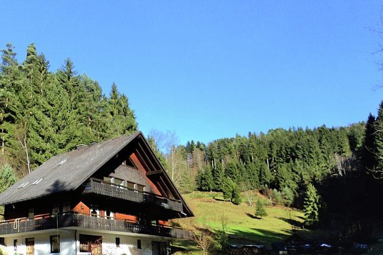 Vakantiewoning Duitsland, Baden-Wurttemberg, Triberg ot Gremmelsbach vakantiewoning DE-78098-10