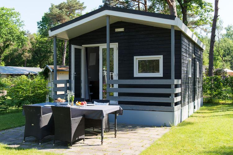 Vakantiehuizen Oisterwijk te huur Oisterwijk- NL-5062-23   met wifi te huur