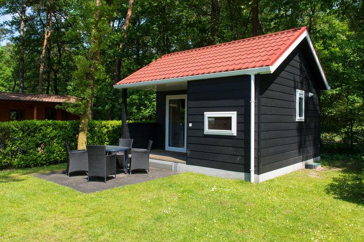 Vakantiehuizen Oisterwijk te huur Oisterwijk- NL-5062-24   met wifi te huur