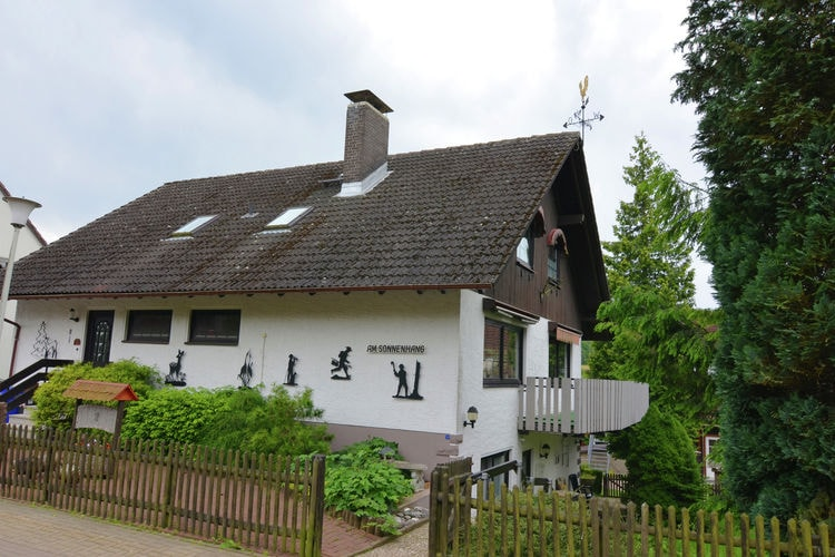 am Sonnenhang - Apartment - Clausthal-Zellerfeld