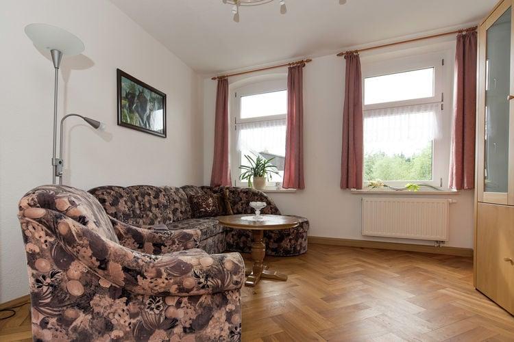 Appartement Duitsland, Saksen, Grünbach Appartement DE-08223-05