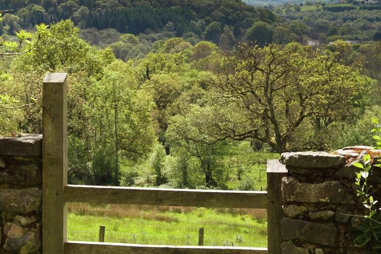 Holiday house Ty Gorof (1483558), Rhandirmwyn, West Wales, Wales, United Kingdom, picture 27