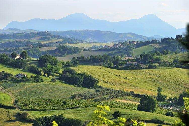 Ferienwohnung Luca (1379324), Montemaggiore al Metauro, Pesaro und Urbino, Marken, Italien, Bild 35
