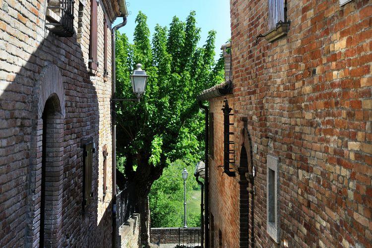 Ferienwohnung Luca (1379324), Montemaggiore al Metauro, Pesaro und Urbino, Marken, Italien, Bild 4