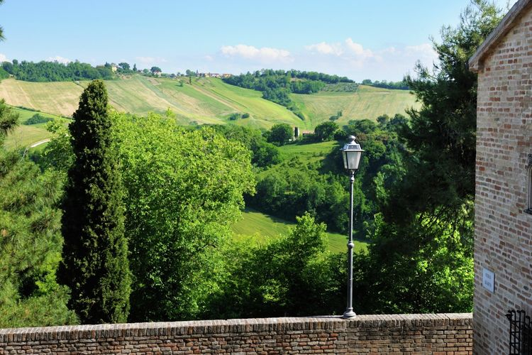 Ferienwohnung Luca (1379324), Montemaggiore al Metauro, Pesaro und Urbino, Marken, Italien, Bild 27