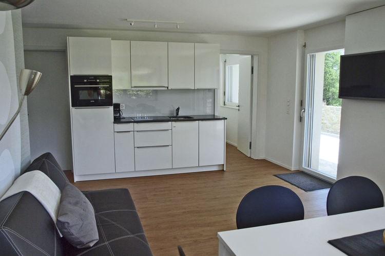 Appartement Zwitserland, Jura, Rosswald Appartement CH-3913-09