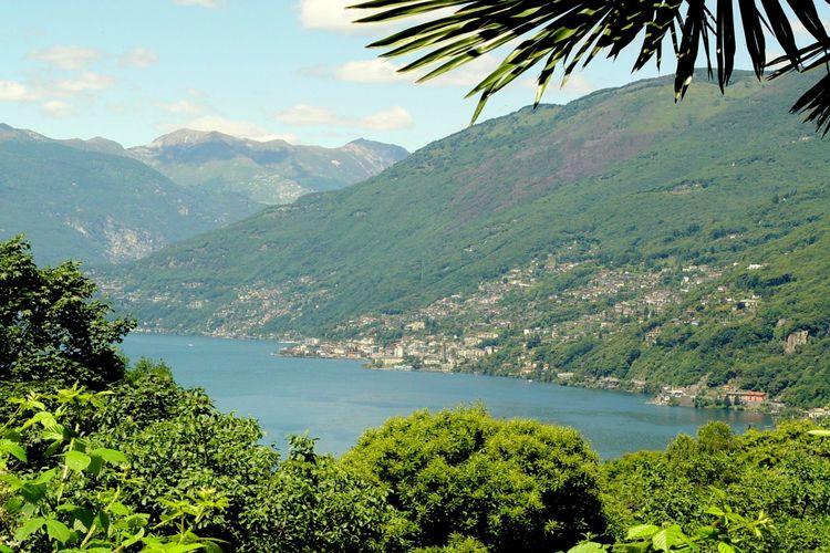 Holiday apartment Bilo Garden Due Bis (1082991), Cannobio, Lake Maggiore (IT), Piedmont, Italy, picture 19