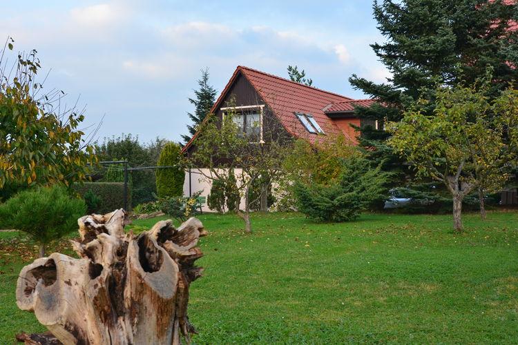 Vakantiehuizen Blankenburg-ot-Wienrode te huur Blankenburg---ot-Wienrode- DE-38889-63   met wifi te huur