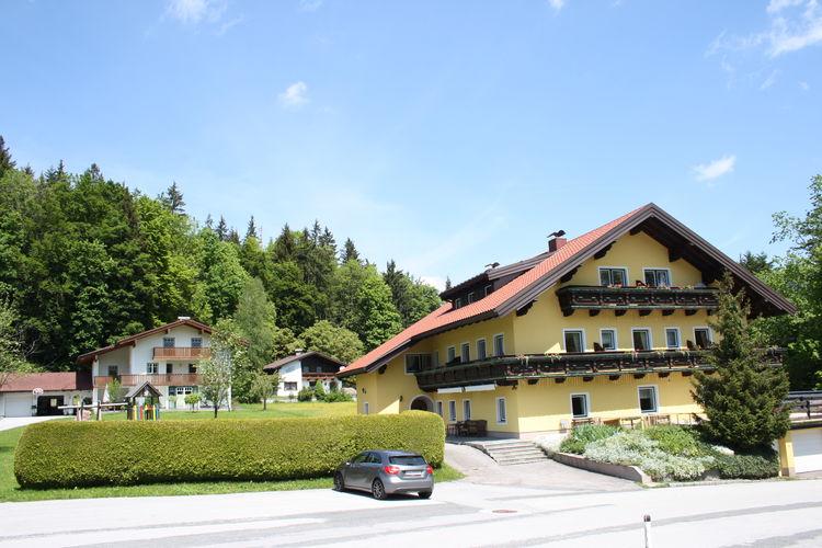 Appartement met zwembad met wifi  SalzburgFerienhaus Rieger