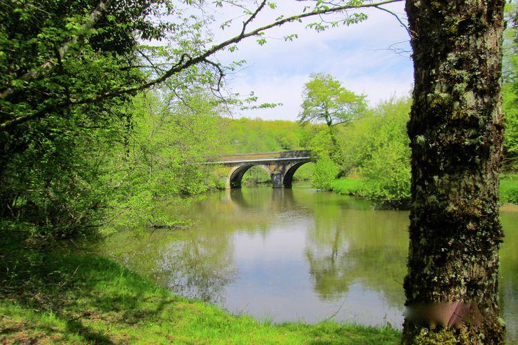 Ferienhaus La Maison du Pont (363765), Savignac Lédrier, Dordogne-Périgord, Aquitanien, Frankreich, Bild 31