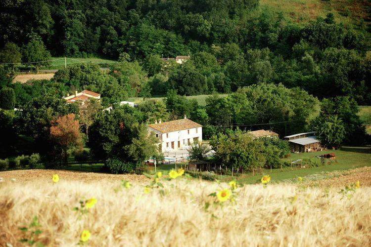 Villa Fano - Chalet - Isola Di Fano