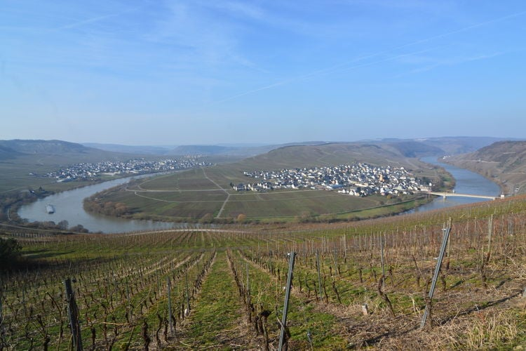 Holiday apartment Beatrix (1517860), Neumagen-Dhron, Mosel-Saar, Rhineland-Palatinate, Germany, picture 29