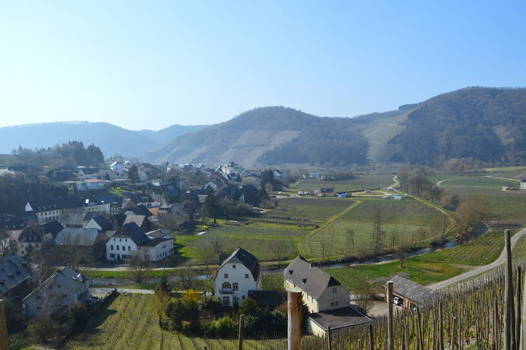 Holiday apartment Beatrix (1517860), Neumagen-Dhron, Mosel-Saar, Rhineland-Palatinate, Germany, picture 30