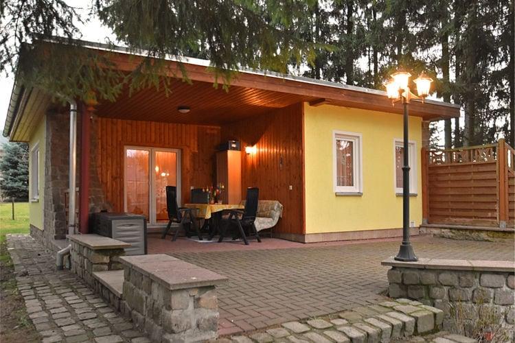 vakantiehuis Duitsland, Saksen, Trieb vakantiehuis DE-08239-01
