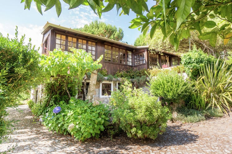 Vakantiewoning met zwembad met wifi  Abragão-Penafiel  Vrijstaand pittoresk cottage op landgoed van Belgische eigenaren