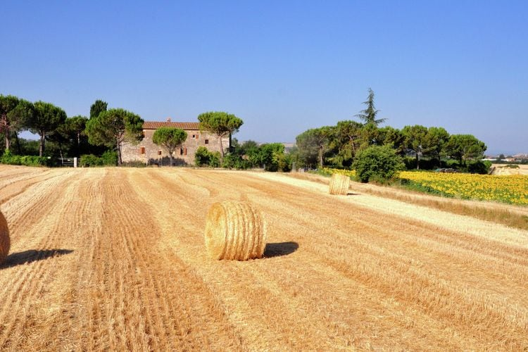 Agriturismo met biologische producten en slow food, ruime tuin en zwembad