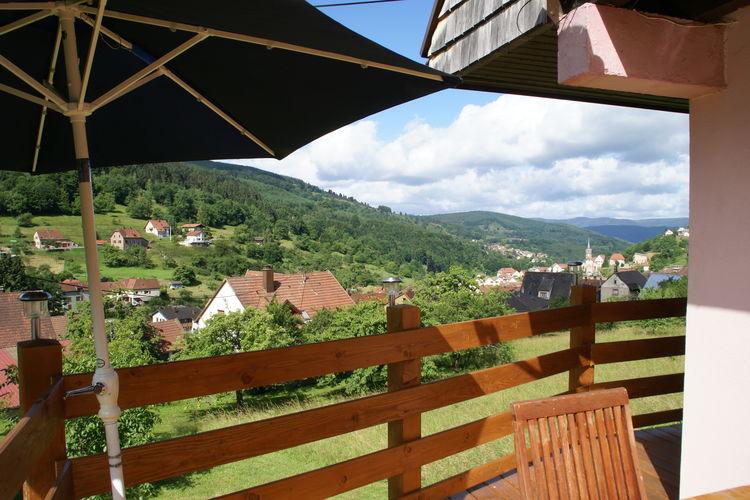 vakantiehuis Frankrijk, Vogezen, Natzwiller vakantiehuis FR-67130-02