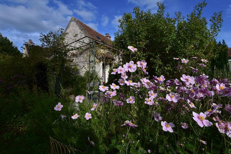 vakantiehuis Frankrijk, Picardie, Moulins (Mézy-Moulins) vakantiehuis FR-02650-02