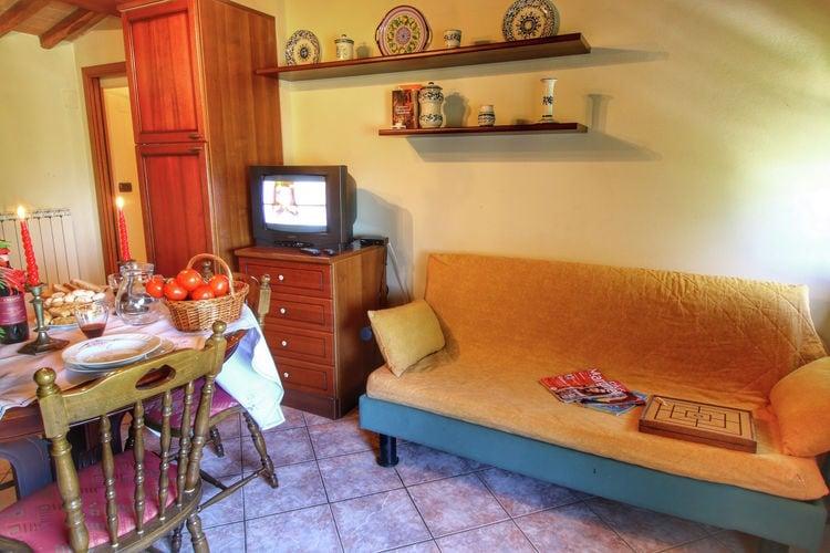 vakantiehuis Italië, Toscana, Bucine vakantiehuis IT-52021-29
