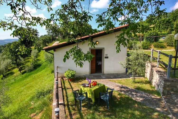 vakantiehuis Italië, Toscana, Caprese Michelangelo vakantiehuis IT-52033-06